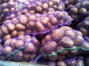 Картофель оптом семенной