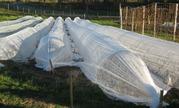 Продажа парников для дачи и огорода с доставкой по Украине за 2 дня