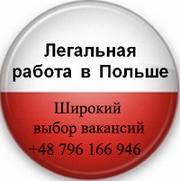 Предлагаю услуги по трудоустройству в Польше и странах ЕС