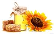 Куплю мед оптом по всей Украине