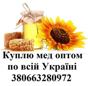 Покупаю мед по всей Украине