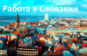 Работа в Словакии для мужчин и женщин з/п в час от 3, 5 до 5, 5 евро