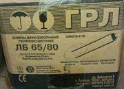 Лампа люминесцентная ЛБ-65/80