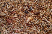 Зерновые,  зерносмеси,  зерноотходы,  некондиция. Любые варианты