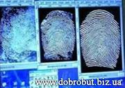 Отпечатки пальцев,  дактилоскопия,  дактилоскопическая экспертиза..
